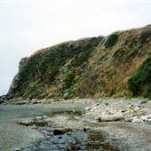 Fort Ross Cove